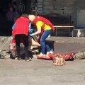 ФОТО: Упавшее на рынке на асфальт мясо отправили в морозильную камеру