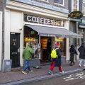 В Амстердаме решили запретить продажу легких наркотиков для иностранцев