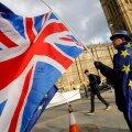 Euroliitu jäämise toetaja Briti parlamendi ees