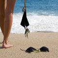 KÜSITLUS | Kas sind häirivad rannas alasti päevitajad?