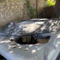 Автомобиль, где погиб Армен