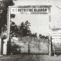В Эстонии открыт инфопортал о массовом убийстве в концлагере Клоога в 1944 году