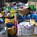 Молодежь собрала для бездомных животных полный прицеп пожертвований