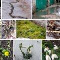 LUGEJATE FOTOD | Suur sula tõi kevademärke üle Eesti