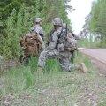 В странах Балтии начинаются масштабные военные учения, по Литве будут ездить танки