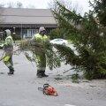 Viljandi jõulupuu