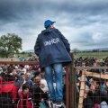 PIIRID: ÜRO Pagulasameti esindaja kõneleb Makedoonia-Kreeka piiril ootavate pagulastega.