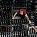 KAASAEGNE KAEVUR: Töö Firenzes asuvas krüptoraha kaevanduses.