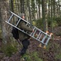 Ka looduskaitse pakub osadele inimestele elatist, kuid nende hulk pole võrreldav metsasektori poolt loodud töökohtadega.