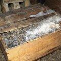 Shackletoni maha jäetud kast šoti viskiga toodi ära juba kolm aastat tagasi.
