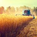 Metsa- ja põllumajandus püsivate muutuste keerises