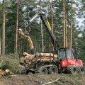 METSATRAHV. Üks Euroopa kliimaplaane võib Eestile kalliks maksma minna