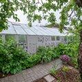 Ilmastikukindla värviga kaetud ehitusteip päästis pererahva vajadusest kasvuhoone välja vahetada.