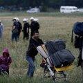 FOTOD ja VIDEO: Kreeka võimud alustasid Idomeni pagulaslaagri tühjendamist Makedoonia piiril
