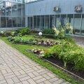 Tallinna botaanikaaed.