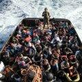 ÜRO: põgenike arv ületas 70 miljoni piiri