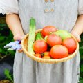 А вы знали? Почему всегда следует сажать цветы на грядке с овощами