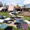 FOTOD: Tsükloni räsitud Vanuatu vajab hädasti toidu- ja muud abi