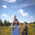 Vähest vaba aega naudivad Jevgeni ja Triinu Ossinovski koos poja Arturiga looduses: olgu siis suvekodus Lahemaal või pereemale kuuluvatel MUSTiKASSi mahemustika-põldudel Pärnumaal. | Fotod: Hele-Mai Alamaa