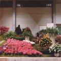 Eesti osaline ekspositsioon Genti rahvusvahelisel lillenäitusel 1990. aastal.