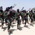 USA õhurünnak tappis Somaalias vähemalt 150 Al-Shababi võitlejat