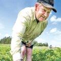 Kambja valla Kavandu küla Alliku talu peremees Mati Suits käib iga päev kartulipõllul kahjureid hävitamas.