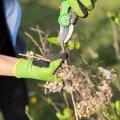Kindad on aedniku kätele parim kaitse.