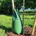 ФОТО   В Таллинне к деревьям стали прикреплять зеленые мешки. Зачем?