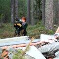 TUULEST VIIDUD: Lisaks ühele PPA andmesidemastile (pildil) langetas Lõuna-Eestis möllanud tuul ka puid. Loendamatult.