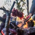 Liha lõkke kohal vardas.
