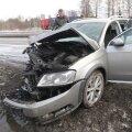 ГЛАВНОЕ ЗА ДЕНЬ: Отравление таллиннских собак, столкновение трех автомобилей и новый генсек Партии реформ