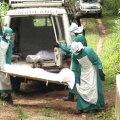 Ebolaohvrite transportimine Sierra Leones.