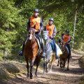 Põhjamaade parimad ratsanikud tulevad Kõrvemaale
