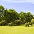 Oled imetlenud vägevaid muruskulptuure? Vaata, kuidas neid endagi aeda rajada!