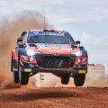 Thierry Neuville ja teiste Hyundai meeste masinatel vilguvad tuled tihedalt ja eredalt, et loomi eemale peletada.