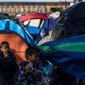 USA piiril suri illegaalist seitsme-aastane tüdruk veepuudusse