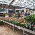 Gardest kodu- ja aianduskeskus.