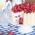 RETSEPT | Pidulik tort koolilõpetajale — maasika-sidrunišarlott