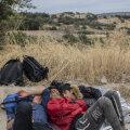 Kreeka teeb kasvava sisserände tõttu varjupaiga saamise keerulisemaks