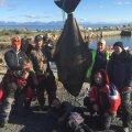 VIDEO: Eesti mehed said Norras kätte 158-kilose kala!