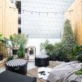 ФОТО | Стильный тренд — сады, балконы и террасы в Скандинавском стиле. Атмосфера легкости и уюта обеспечена