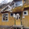 Здесь уже 20 лет никто не живет: блогеры RusDelfi исследуют заброшенную деревню