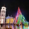 ФОТО | Вильнюс снова удивил. В центре литовской столицы установили чудо-елку