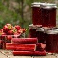 Maasika-rabarberimoos basiilikuga