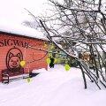 Nõmme turul võib jalutada kõrgete lumehangede vahel kenasti puhtaks roogitud teedel ja lasta end mõnel piparkoogimaja meenutaval poekesel sisse meelitada.