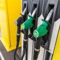 За год моторное топливо подорожало на 20%