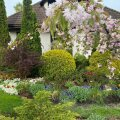 ФОТО | В Хааберсти выбрали самый красивый сад района
