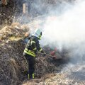 Viljandimaal põles kulu