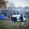 Austria ehitab põgenikevoolu kontrollimiseks Sloveenia piirile tara