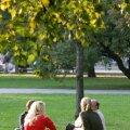 Uurimuse koostajate sõnul võivad ka linnades asuvad pargid ja muud rohealad inimeste tervisele kasulikult mõjuda.